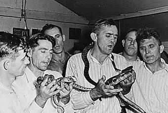 snake-handling-pastor-dies-of-snake-bite-T-ZnUAMg